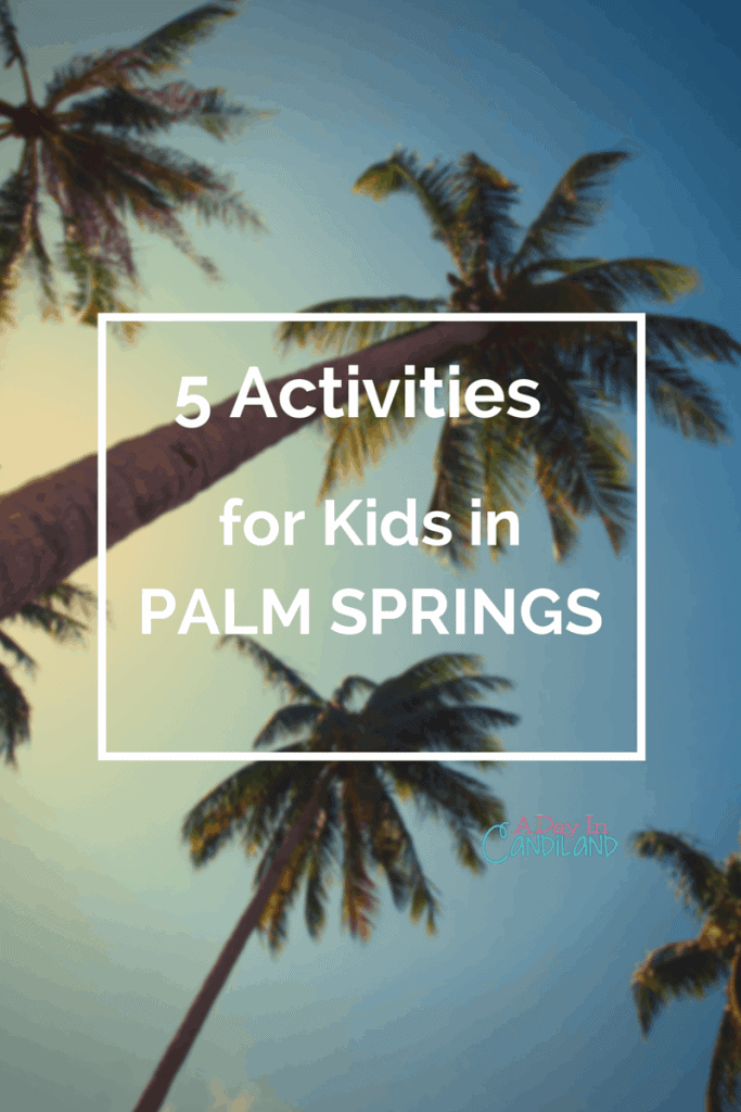 5 Fun Things Kids can do in Palm Springs