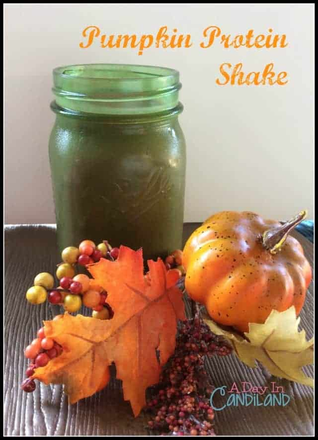 Pumpkin Smoothie: Dairy Free and Gluten Free