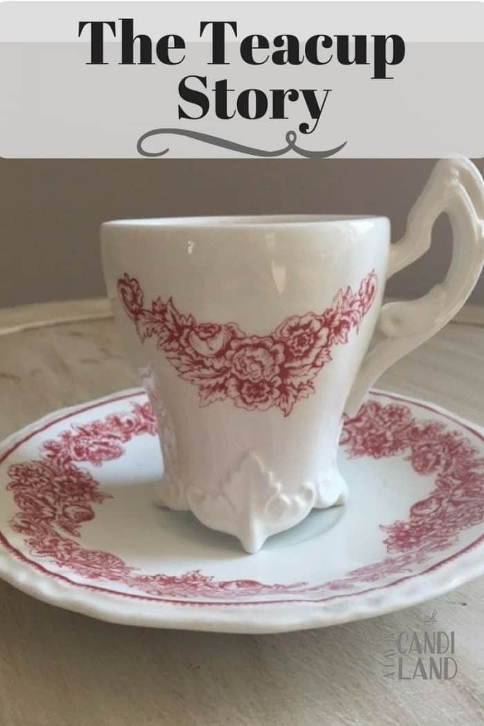 The Teacup Story a red and white teacup and saucer