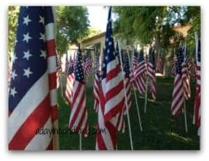 Flags at Patriot Park