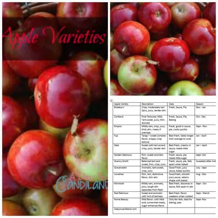 Apple Varieties and chart