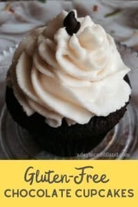 Chocolate cupcake with vanilla icing on plate