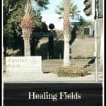 Veterans Day and Healing Fields