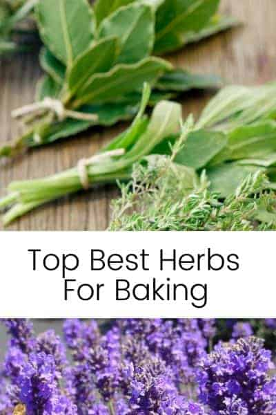 Top Best Herbs to bake with long image