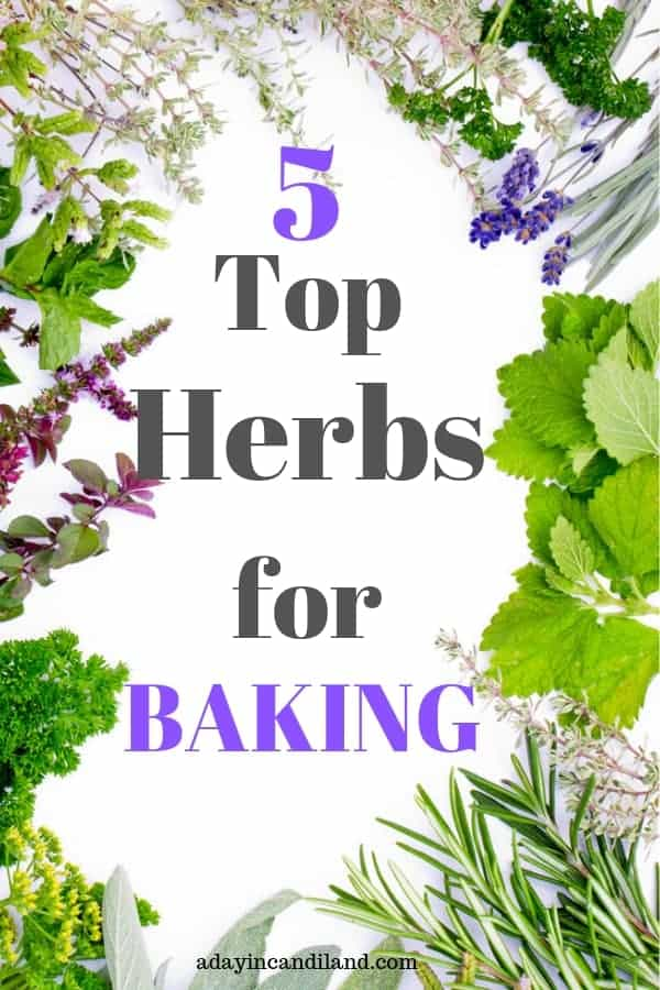 Top Herbs for Baking
