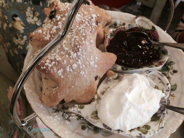 Belladonna chocolate chip scones for afternoon tea