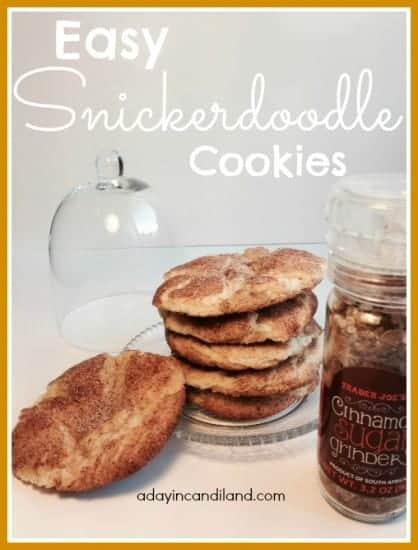 easy-snickerdoodle-cookies-29
