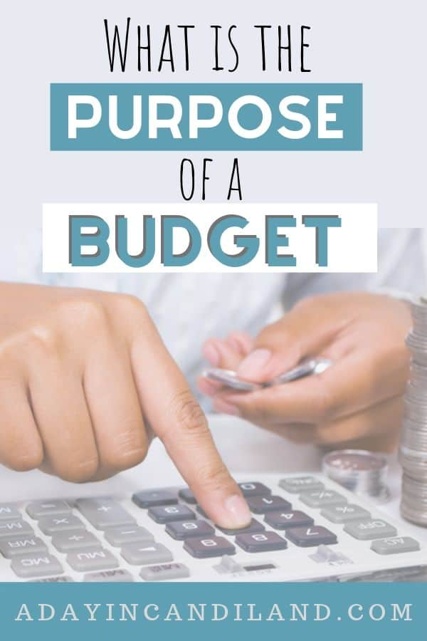 What is the purpose of a budget