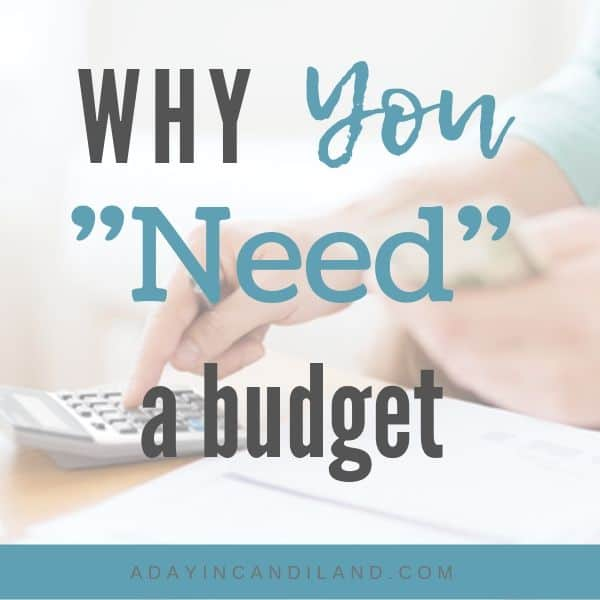Purpose of a Budget