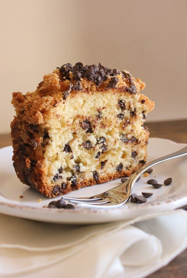 Ultimate Chocolate Chip Recipes