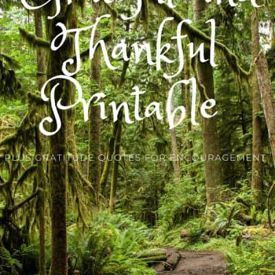 50 Things I Am Grateful For Printable