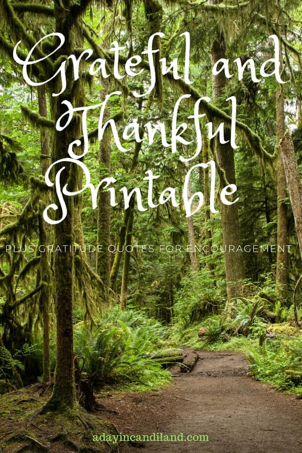 50 Things I am Grateful for Printable Trees Forest