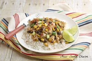 Southwestern Chicken meal plan 106