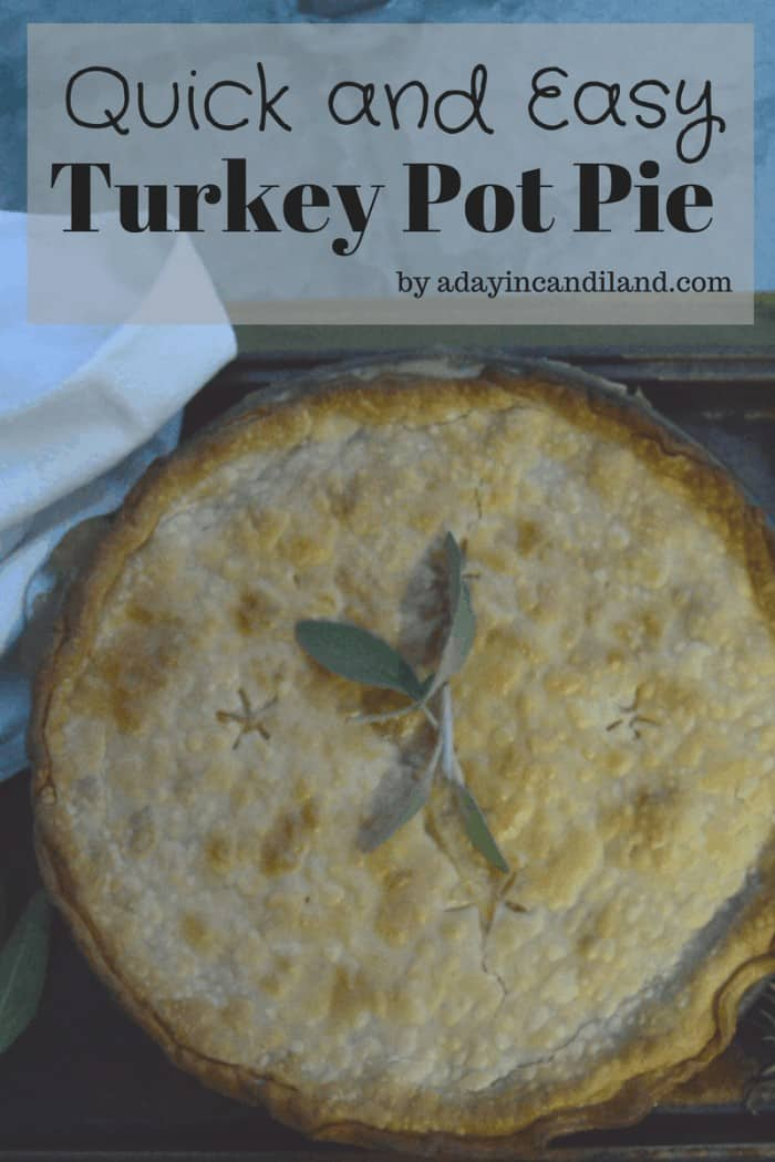 Quick and Delicious Turkey Pot Pie #serveturkey #tryturkey