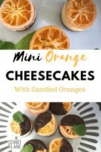 Mini Orange cheesecakes with oranges