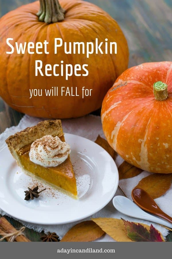 Sweet Pumpkin Recipes you will fall for