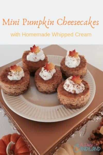 Mini pumpkin cheesecakes with homemade whipped cream