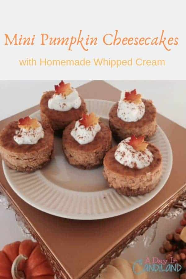Mini pumpkin cheesecakes with homemade whipped cream