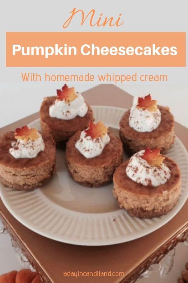 5 Mini cheesecakes on a white plate