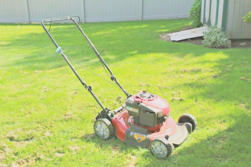 Outdoor Fall Cleaning Lawn Mower
