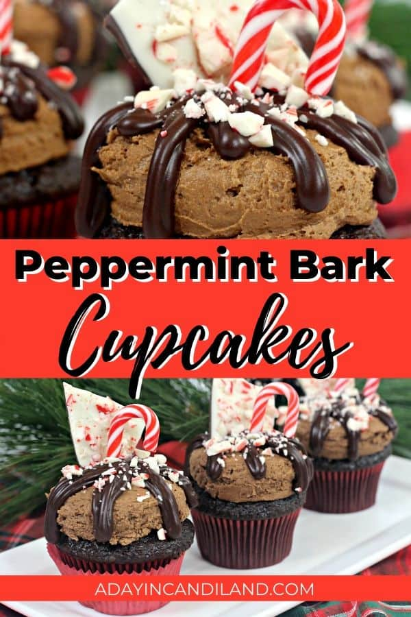 Peppermint Bark Cupcakes on a tray