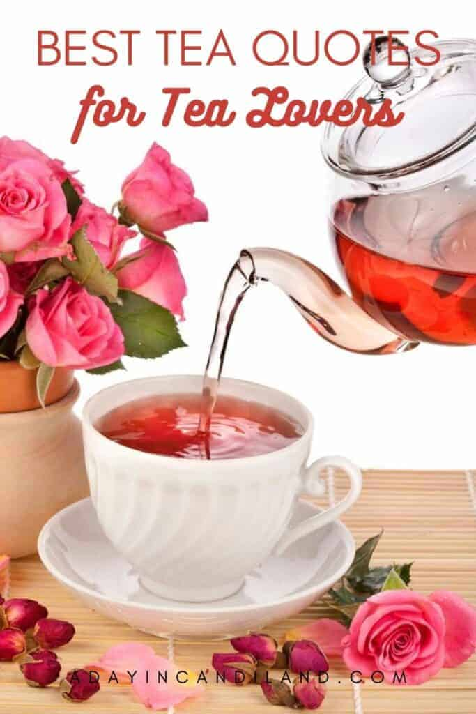 Teapot pouring tea into a white teacup with a pot of pink roses next to it.