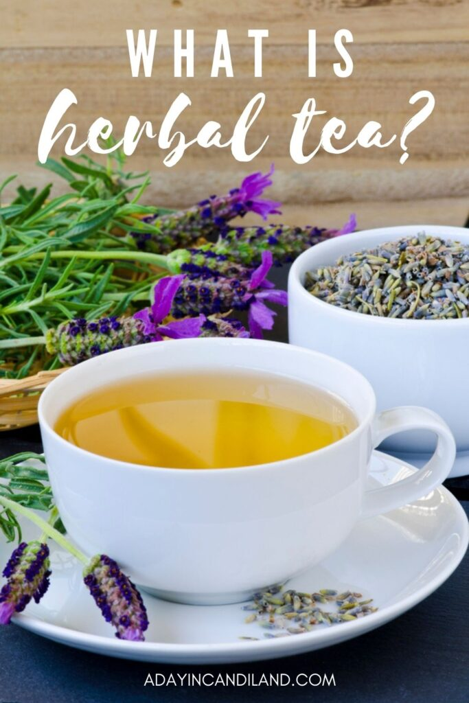 White cup of herbal tea with lavender stems on the table